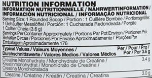 OPTIMUM NUTRITION Creatine non aromatisée 634 g