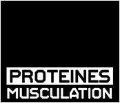 Proteines Musculation