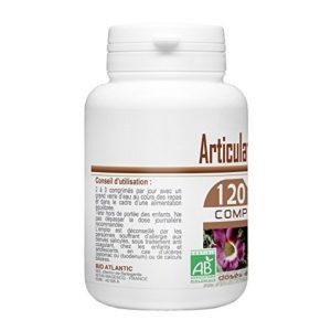 Articulation Bio 400 mg – 120 comprimés – Harpagophytum, Prêle, Reine Des Prés