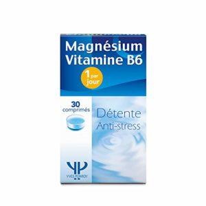 Magnésium B6 – Origine Naturelle – Haute Concentration ET Absorption – 1 seule gélule/jour [300 mg] – anti-stress crampe fatigue – Yves Ponroy
