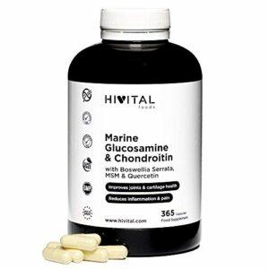 Glucosamine avec Chondroïtine. 365 gélules. Avec MSM, Boswellia Serrata et Quercétine. Anti-inflammatoire naturel qui réduit les douleurs, les inflammations articulaires, renforce les os et cartilages