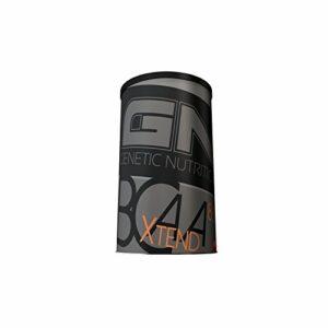 GN Laboratories BCAA Xtreme 8:1:1 Supplément d'acides aminés Bodybuilding 500g Punch aux fruits